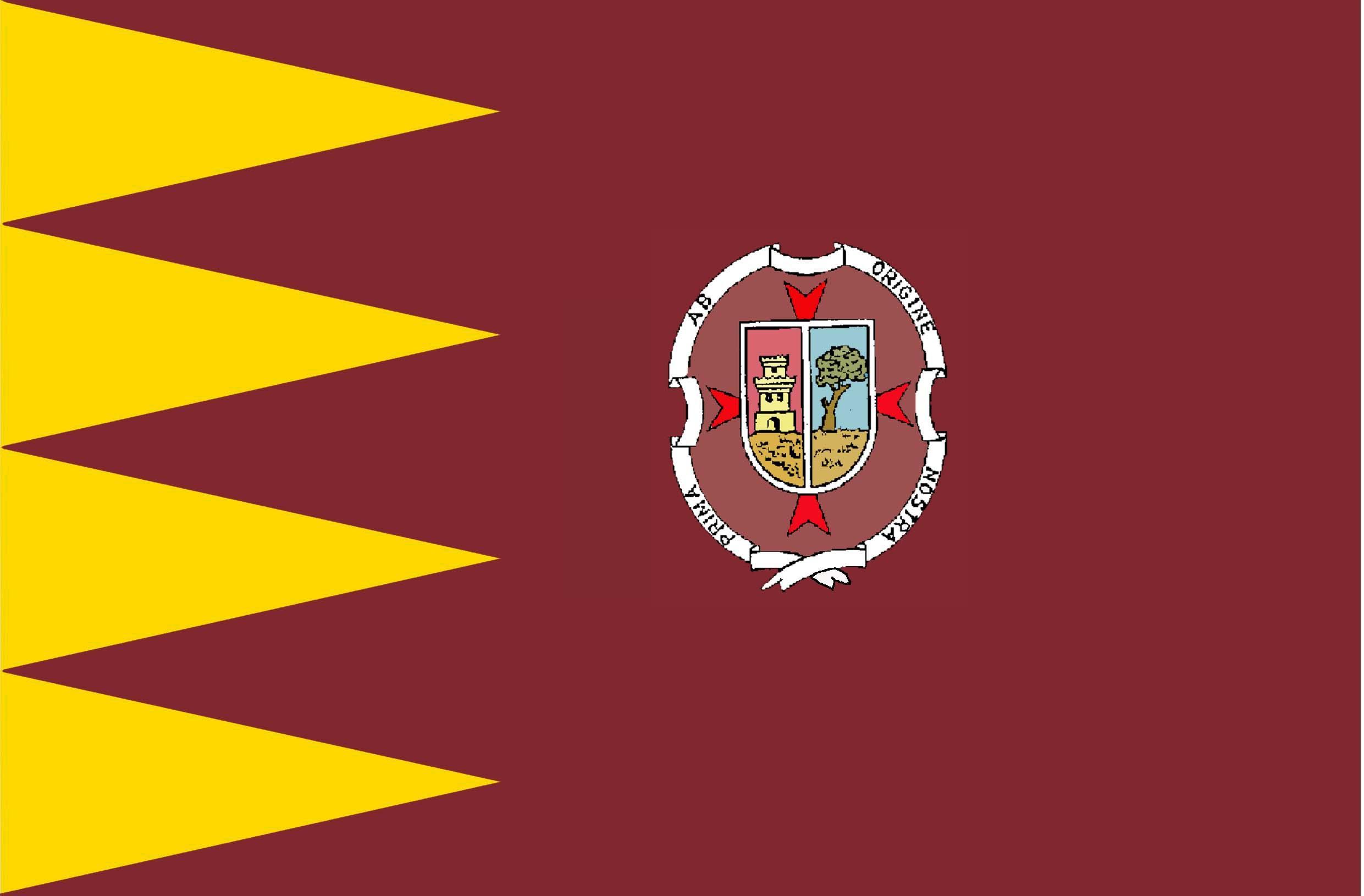 Bandera de Madridejos