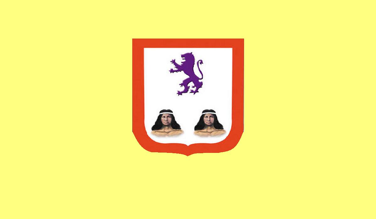 Bandera de Salvaleón