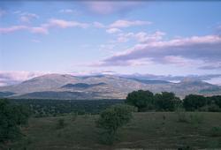 Imagen de Cardiel de los Montes mapa 45642 3
