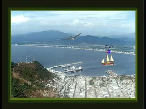 Imagen de Manzanillo mapa 45130 5